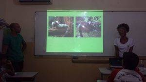 Animais da Caatinga 27