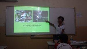 Animais da Caatinga 29