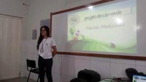 Plantas Medicinais 12
