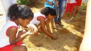Horta Escolar. Programa Escola Verde. 2016