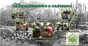 Redescobrindo a Caatinga. Programa Escola Verde. 2016