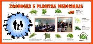 Zoonoses e Plantas Medicinais. Programa Escola Verde. 2016