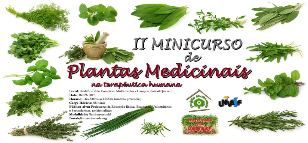 banner do II minicurso de plantas medicinais