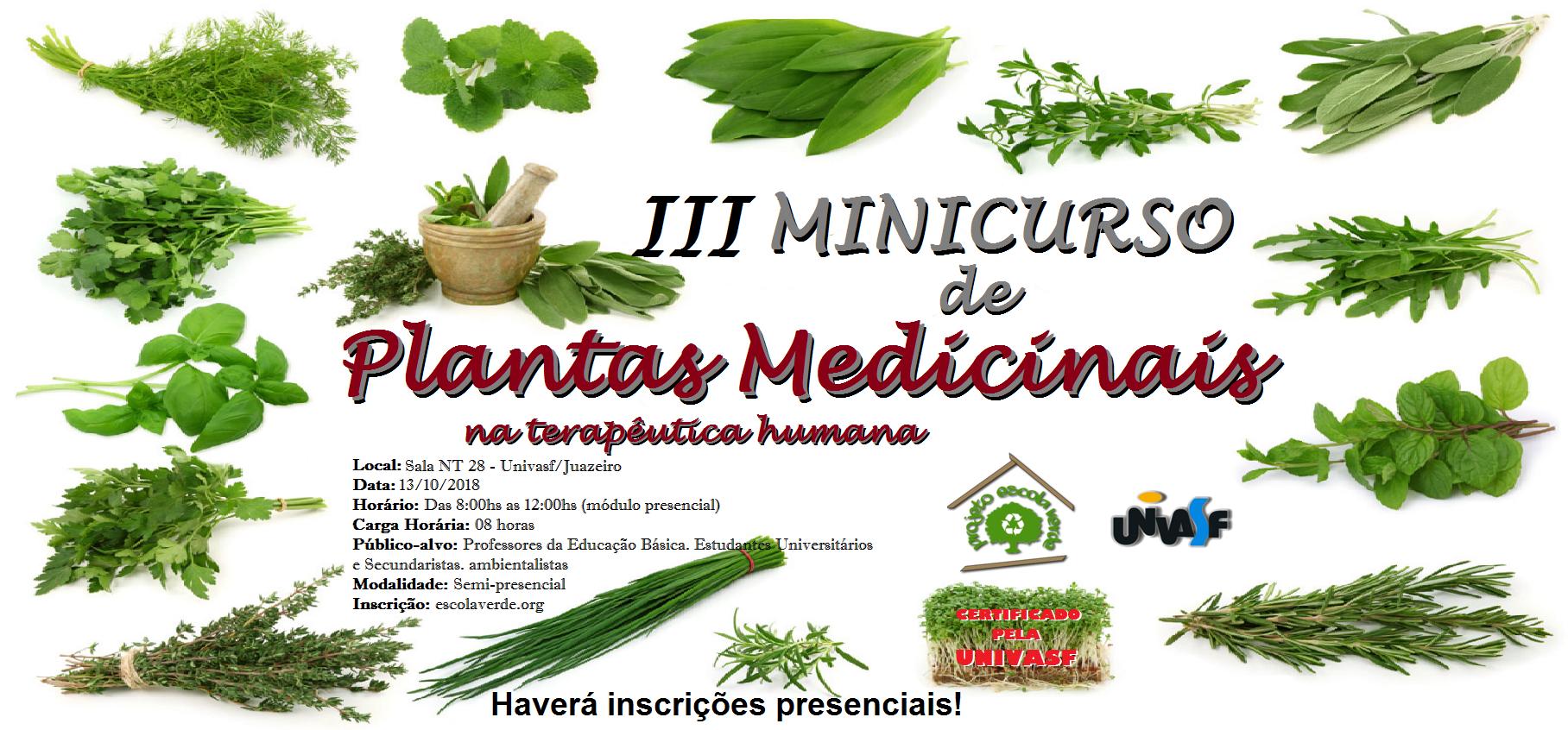 banner do III minicurso de plantas medicinais